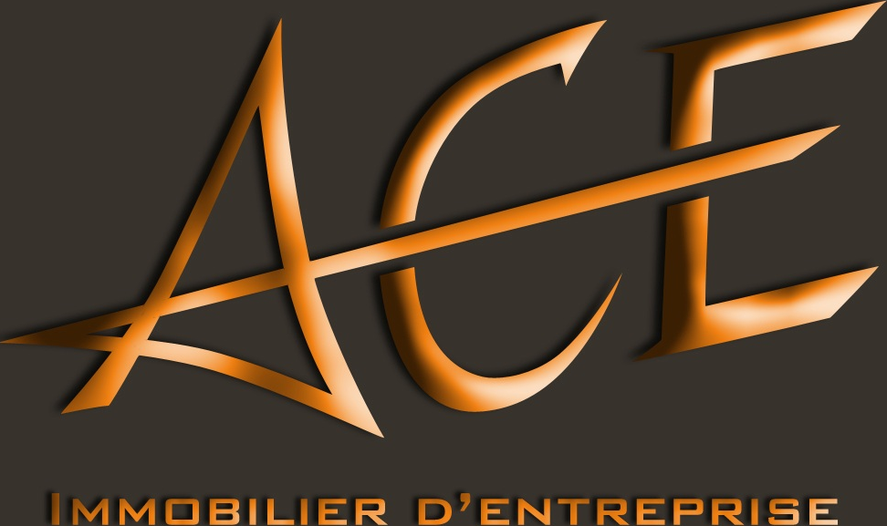 ACE, Immobilier d'entreprise